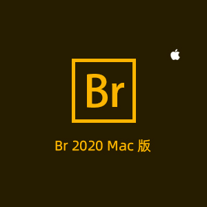 Adobe Bridge 2020 Mac中文版免费下载